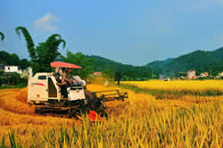 农药行业有望步入良性发展轨道